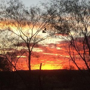 Margaret River Boot Dawn